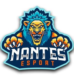Photo de l'entreprise NANTES ESPORT qui recrute dans le jeu vidéo et l'Esport