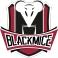 Logo de la structure BlackMice